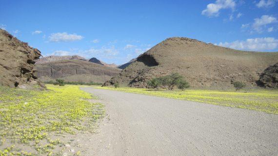 Raid 4x4 himbas dunes namibie 023