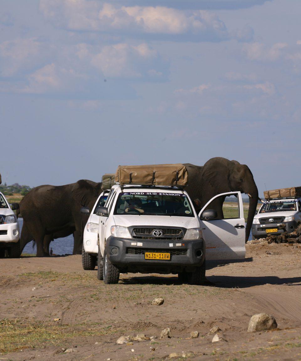 Raid 4x4 okawango botswana 015